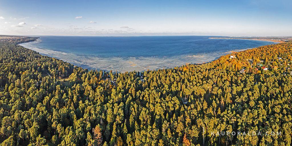 Rannamõisa mets ja rannik
